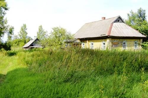 selskie-kanikuli-v-russkoy-derevne-konchaet