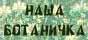 """Сайт """"Наша ботаничка"""""""