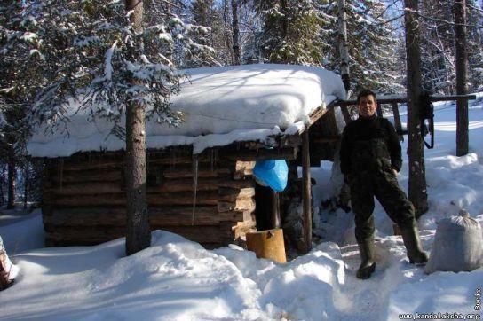 Деревянный дом из бревна в лесу