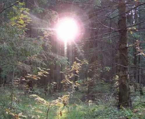 фото с молниями