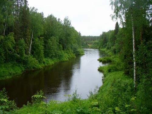 река унжа рязанская область рыбалка